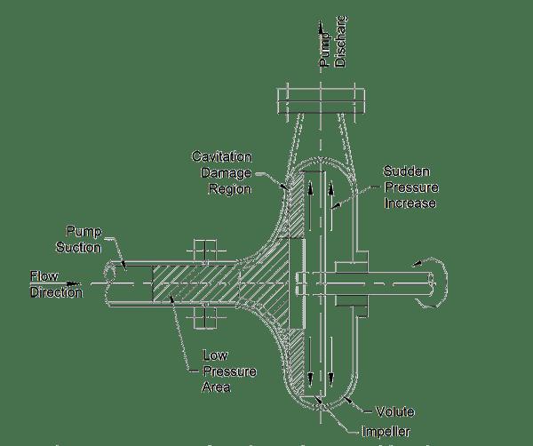 Figure No. 1 Section through a centrifugal pump.